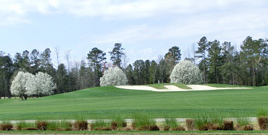 Myrtle Beach Springtime Golf